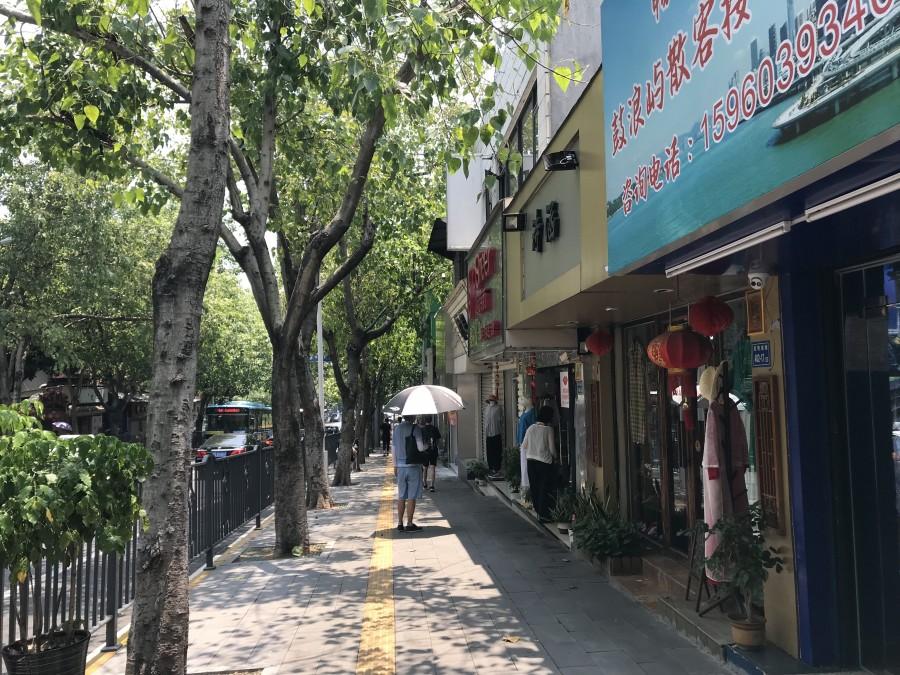 один день преподавателя в субтропическом Сямэнь, Китай, фото 26