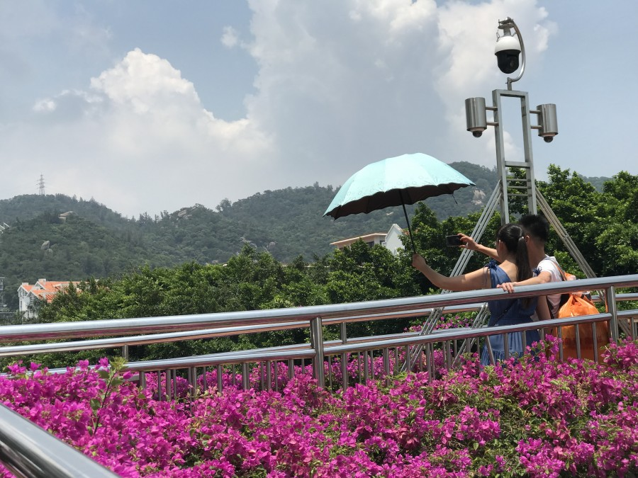 один день преподавателя в субтропическом Сямэнь, Китай, фото 33