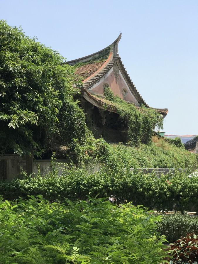 один день преподавателя в субтропическом Сямэнь, Китай, фото 40