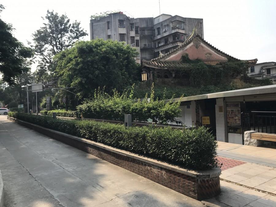 один день преподавателя в субтропическом Сямэнь, Китай, фото 5
