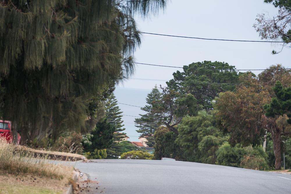 один мой день на пути Шираза в городе Аделаида, штат Южная Австралия, фото 12