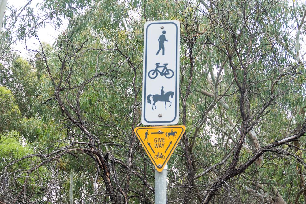 один мой день на пути Шираза в городе Аделаида, штат Южная Австралия, фото 38