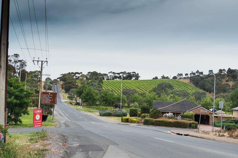один мой день на пути Шираза в городе Аделаида, штат Южная Австралия, фото 51