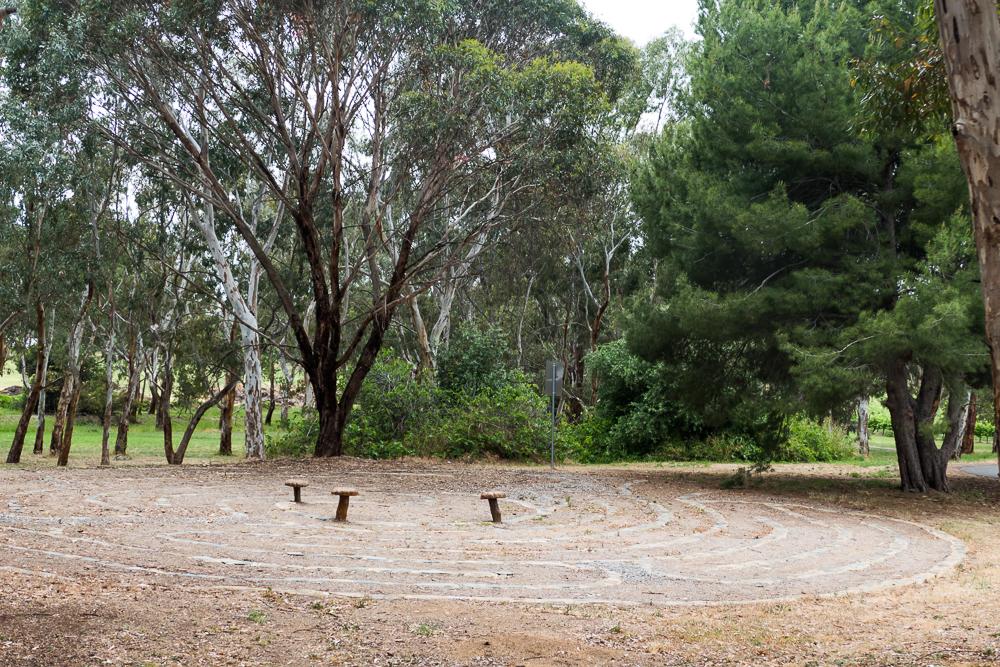 один мой день на пути Шираза в городе Аделаида, штат Южная Австралия, фото 53