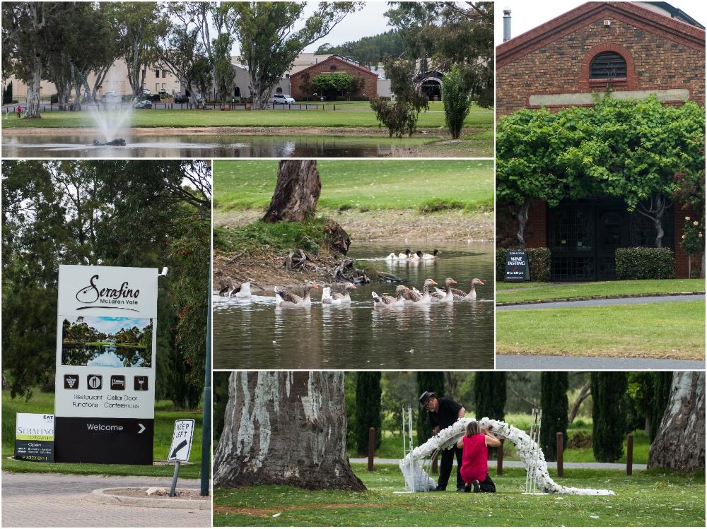 один мой день на пути Шираза в городе Аделаида, штат Южная Австралия, фото 55