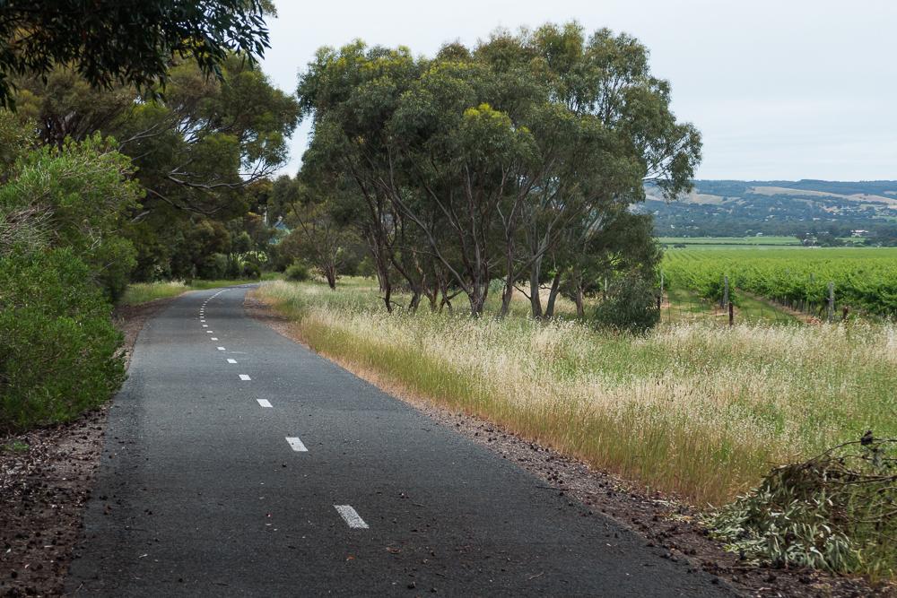 один мой день на пути Шираза в городе Аделаида, штат Южная Австралия, фото 61