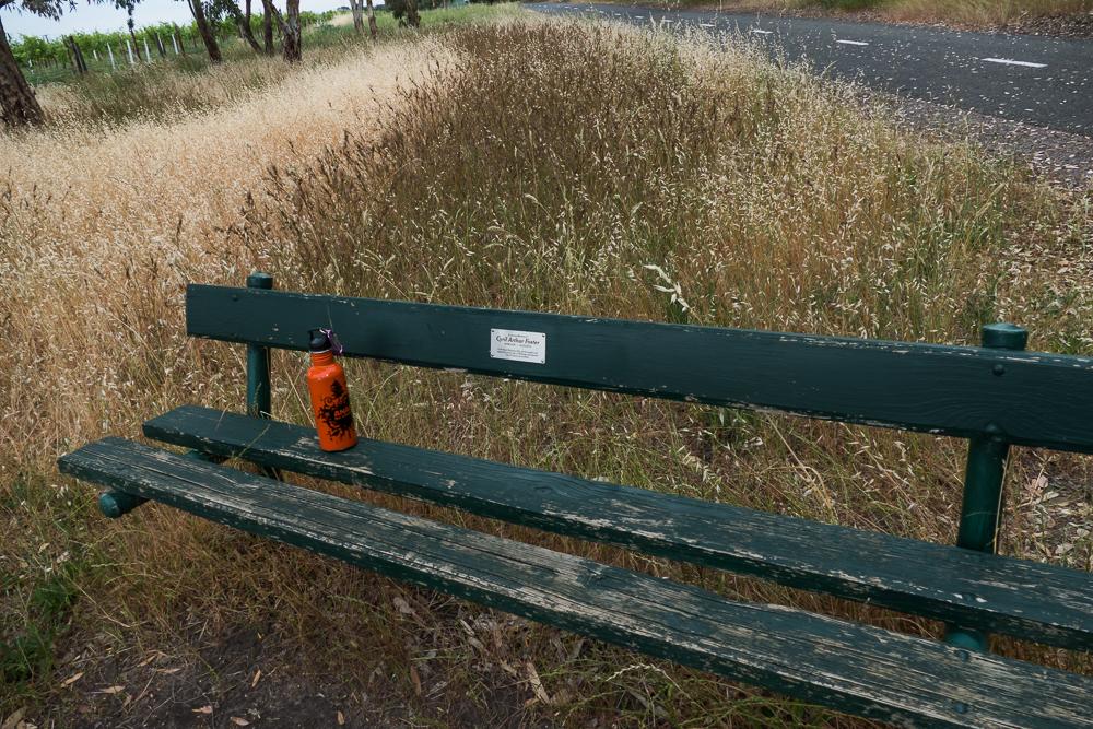 один мой день на пути Шираза в городе Аделаида, штат Южная Австралия, фото 62