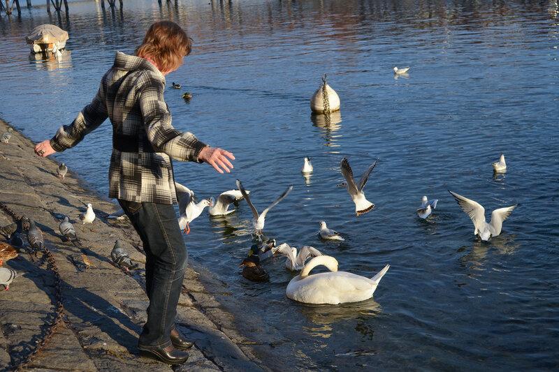 один день преподавателя французского языка в городе Люцерн, Швейцария, фото 65