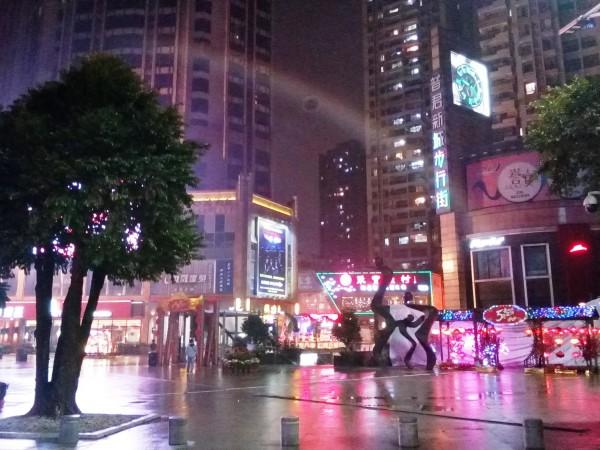 один мой дождливый день в китайском городе Ченду, фото 35