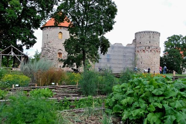 один мой летний день в латвийском городе Цесис, фото 24