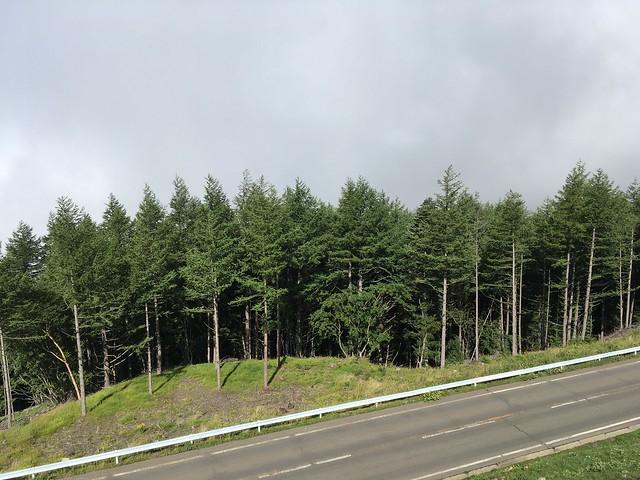 один день русского инженера вблизи горы Фудзияма, Япония, фото 15