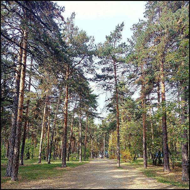 один спонтанный сентябрьский день жительницы Челябинска, фото 24