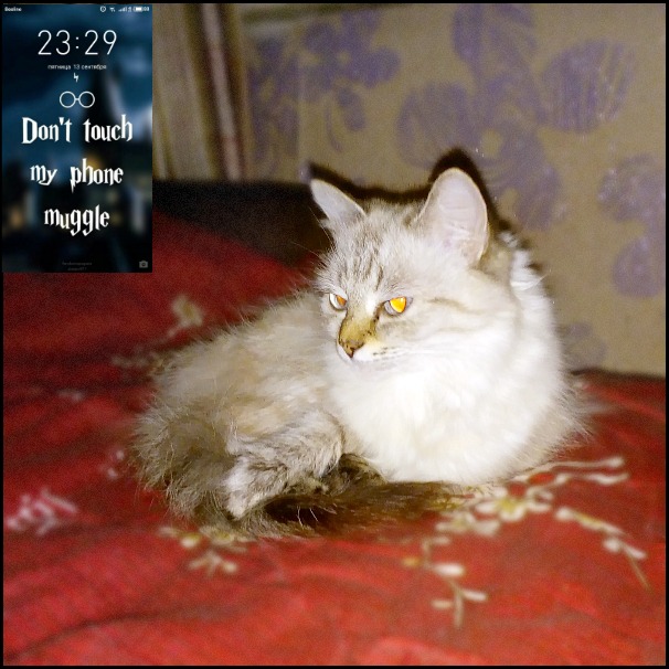 один спонтанный сентябрьский день жительницы Челябинска, фото 44