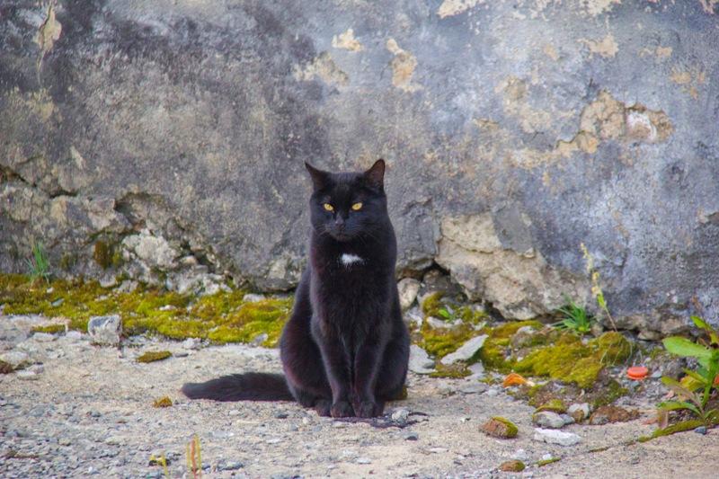 один мой день проведенный в путешествие по Колыме, Магадан, фото 67