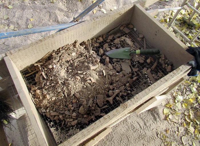 один осенний будний день археолога из Санкт-Петербурга, фото 19