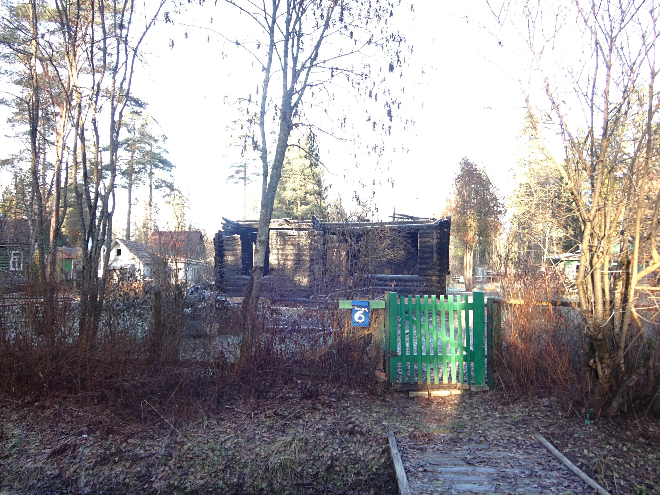 один мой ноябрьский день в Вырице, Ленинградская область, область, фото 13