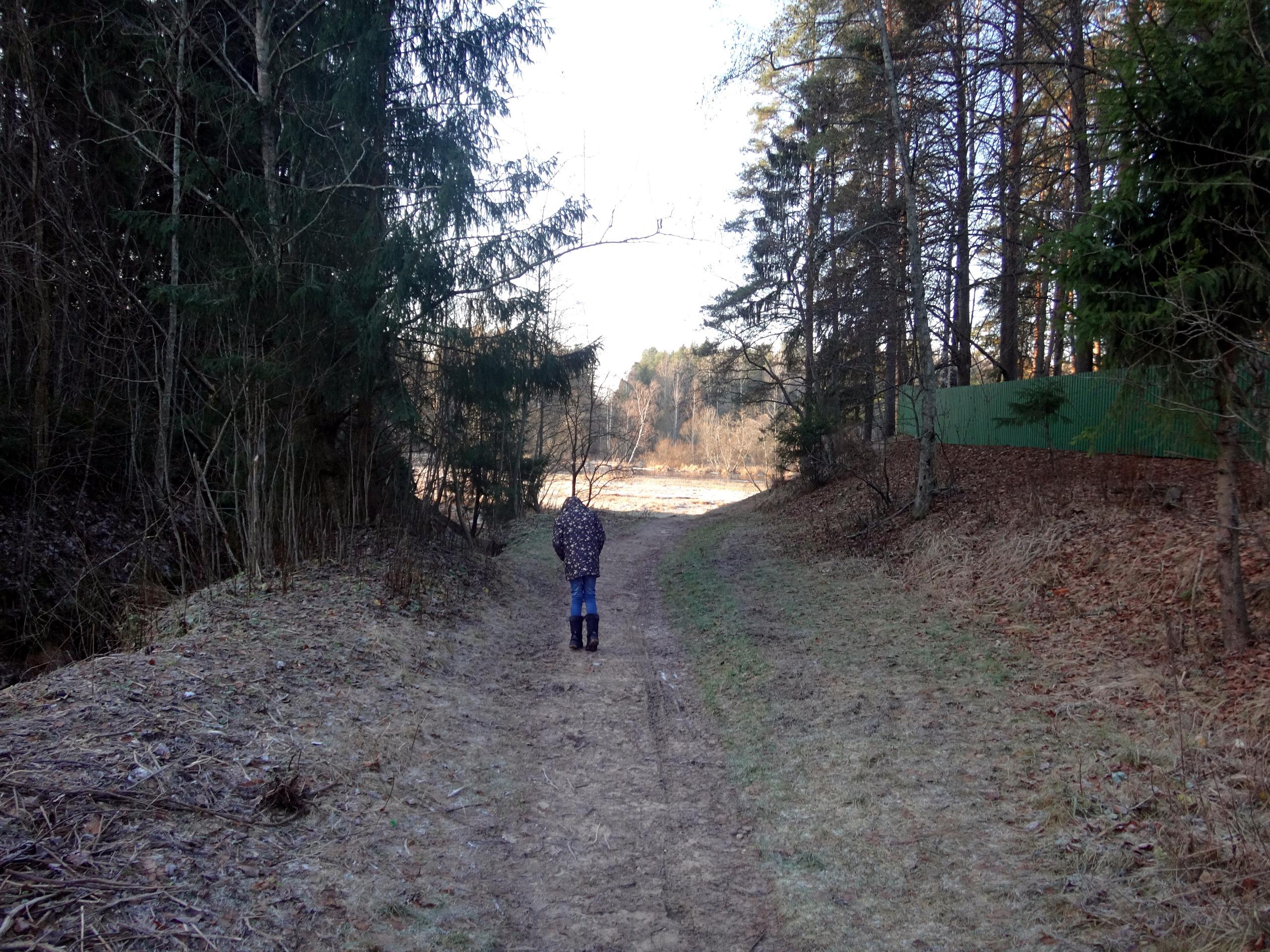 один мой ноябрьский день в Вырице, Ленинградская область, область, фото 14