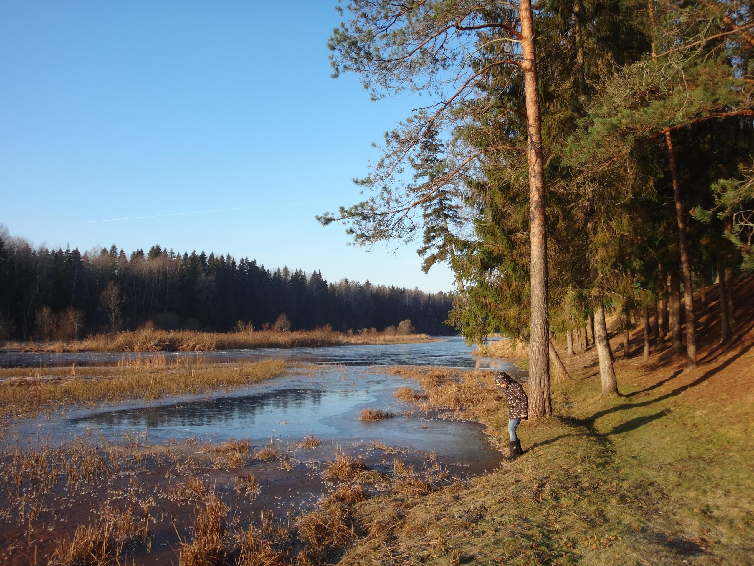 один мой ноябрьский день в Вырице, Ленинградская область, область, фото 16