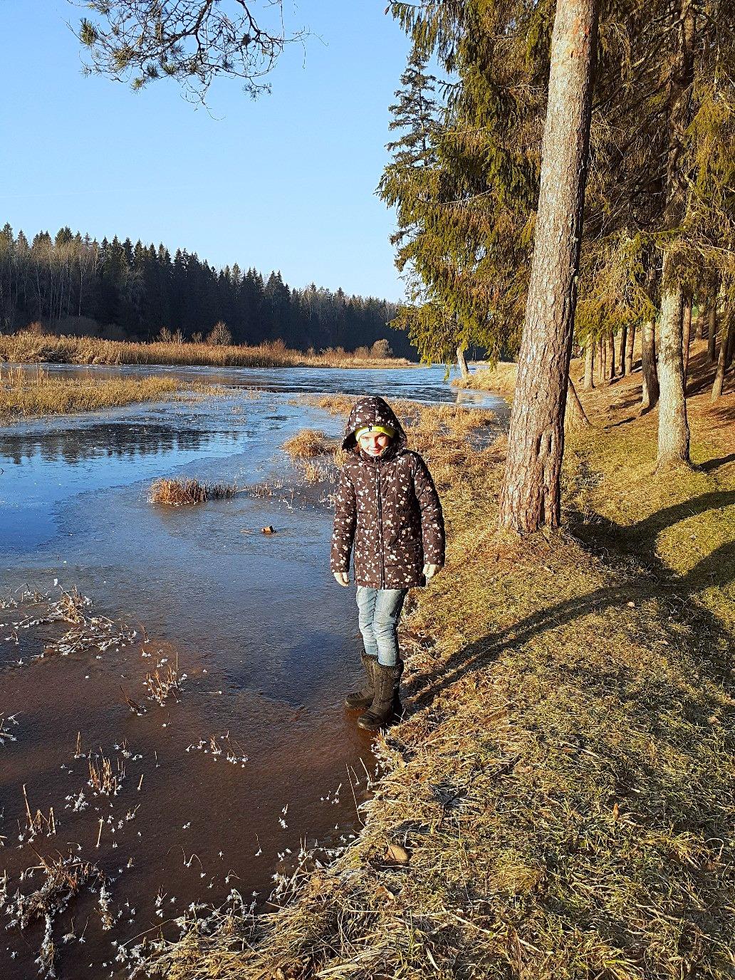 один мой ноябрьский день в Вырице, Ленинградская область, область, фото 17