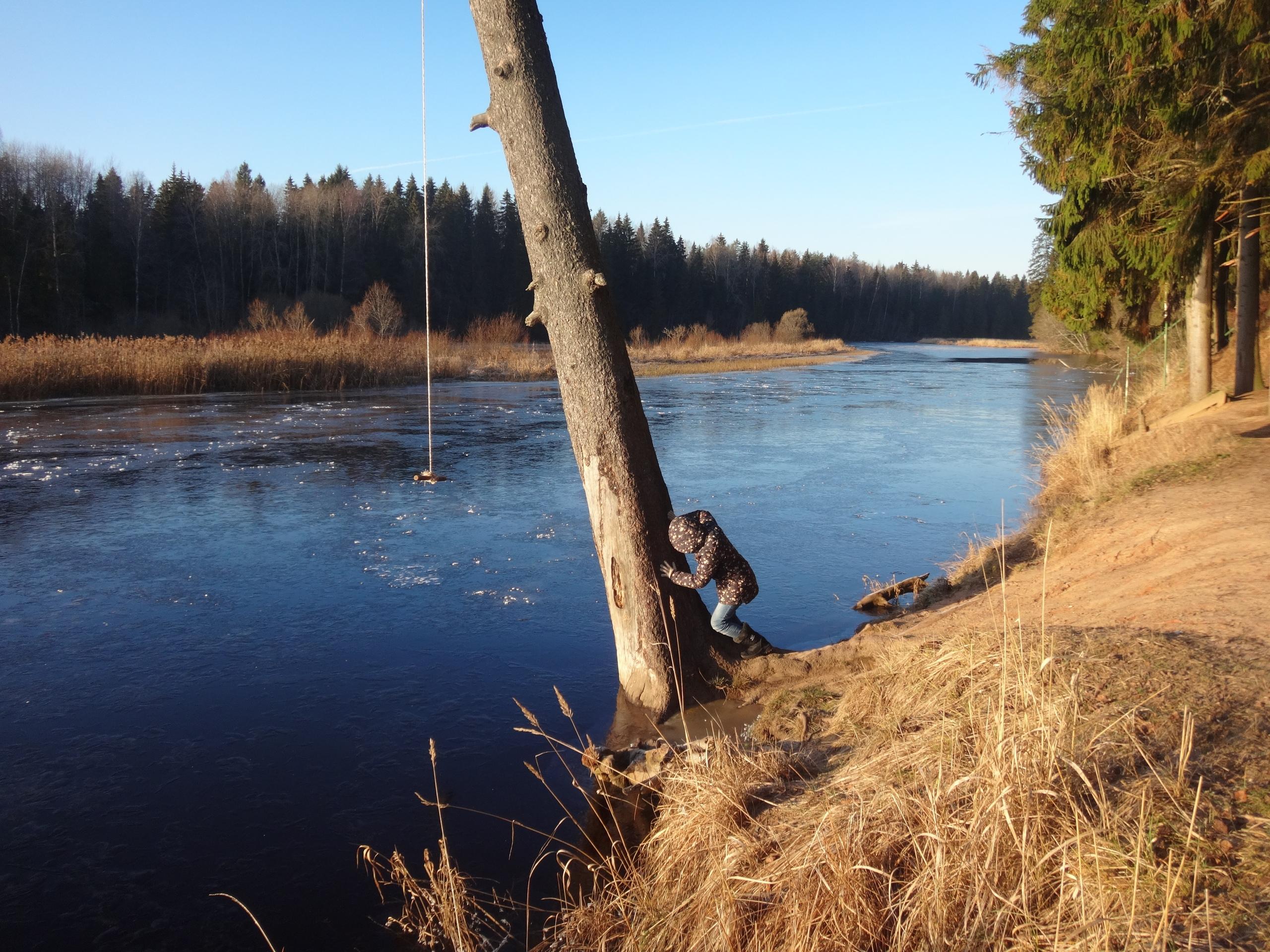 один мой ноябрьский день в Вырице, Ленинградская область, область, фото 20