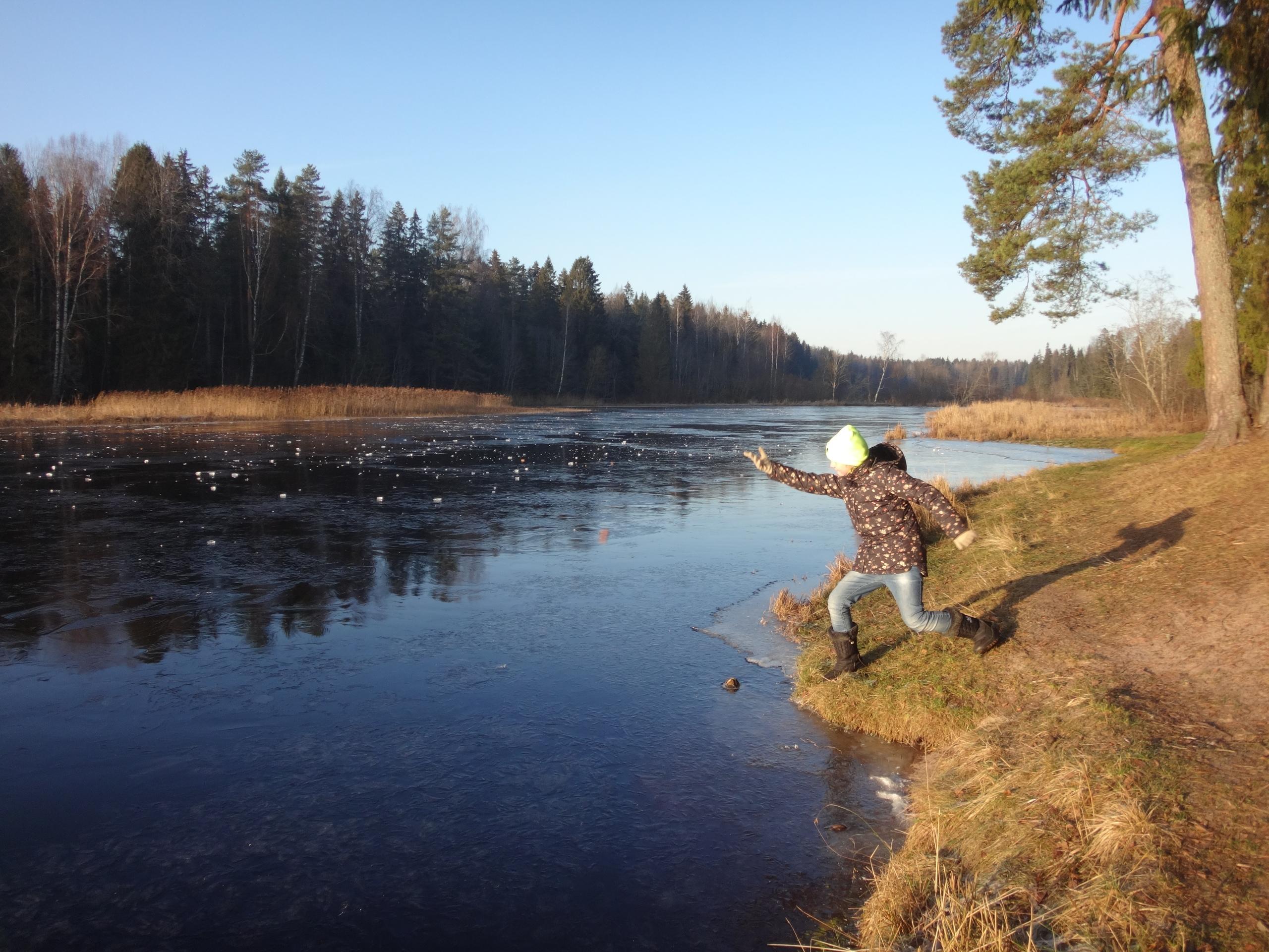 один мой ноябрьский день в Вырице, Ленинградская область, область, фото 26