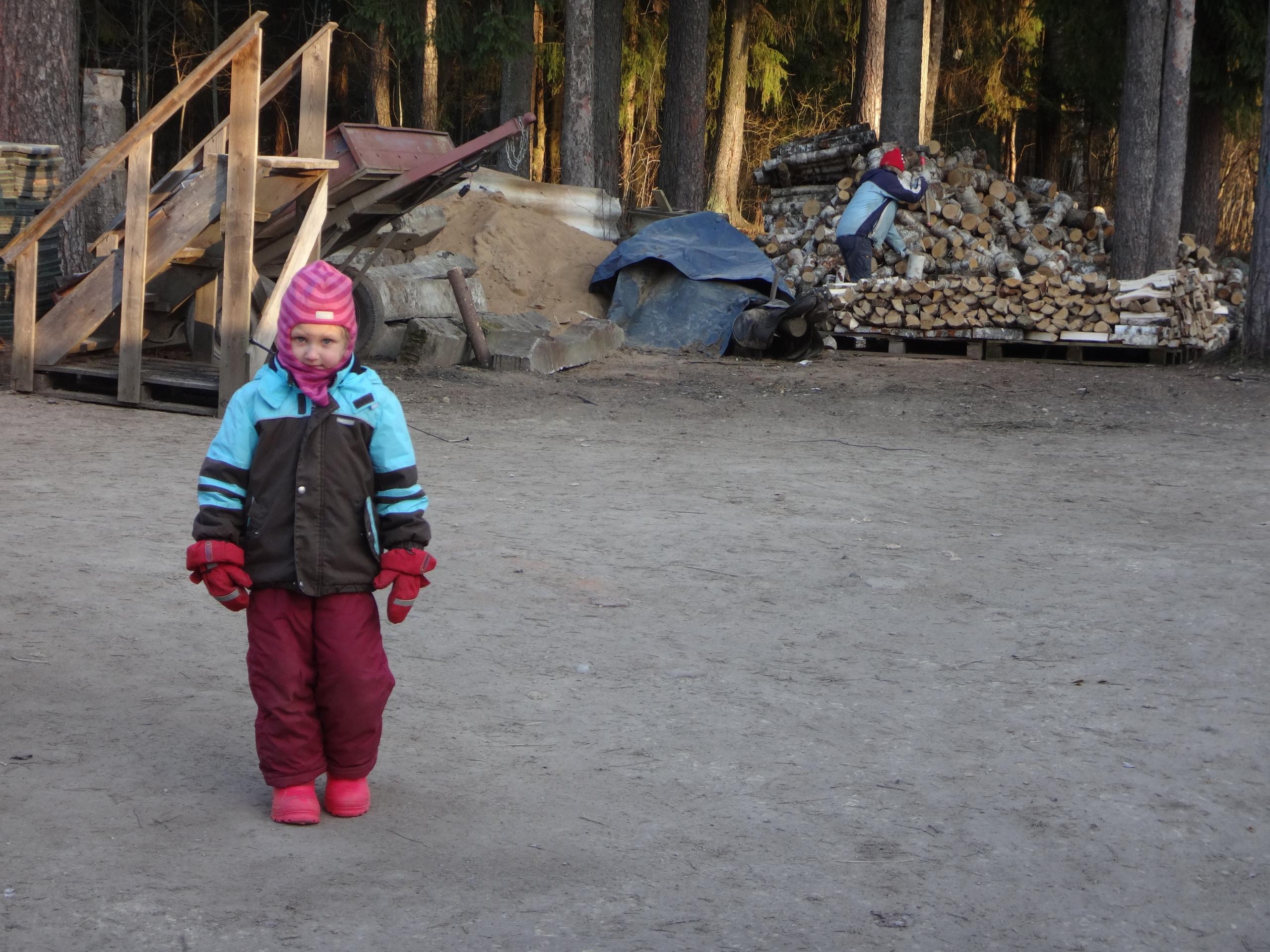 один мой ноябрьский день в Вырице, Ленинградская область, область, фото 34