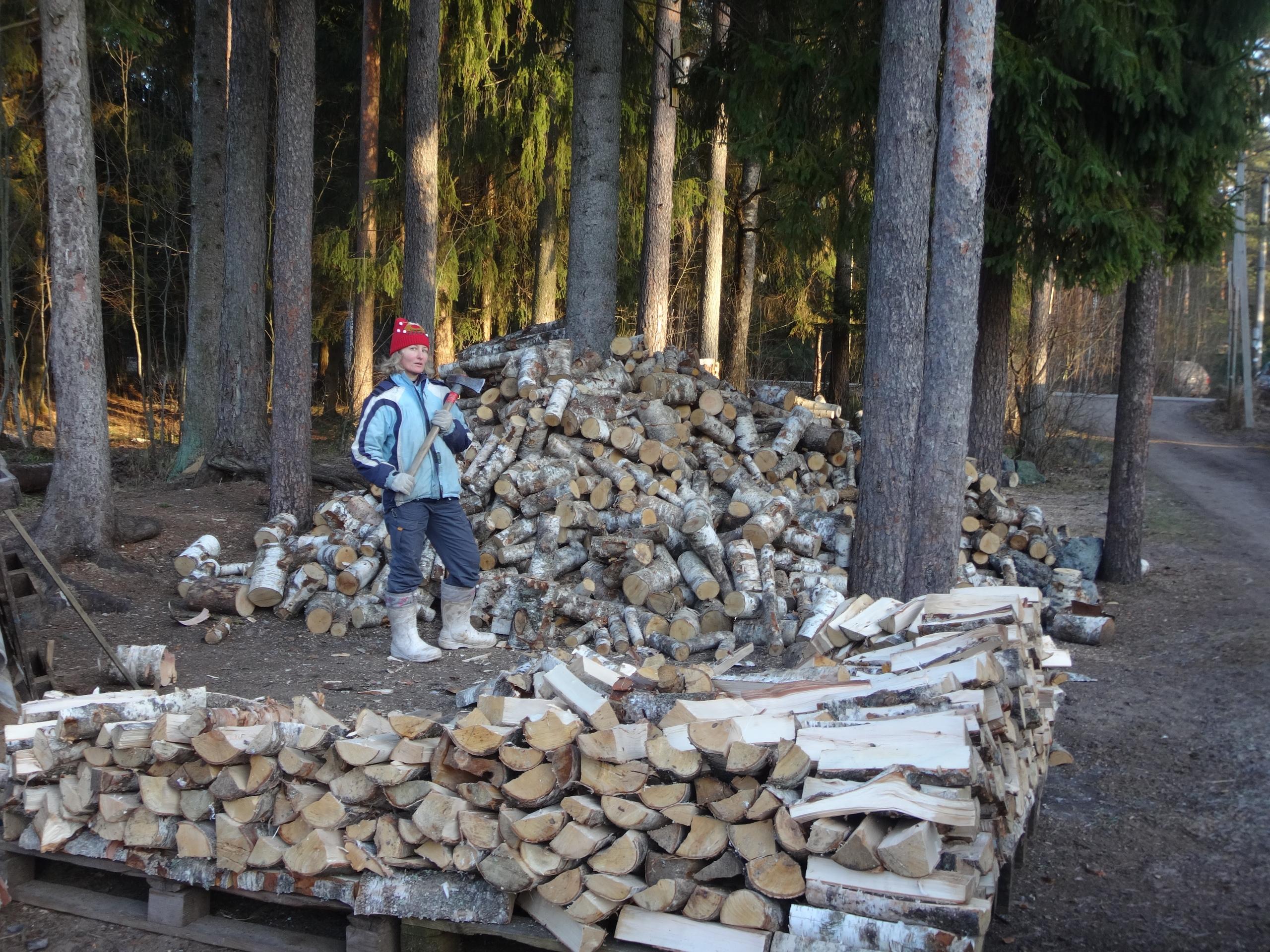 один мой ноябрьский день в Вырице, Ленинградская область, область, фото 35