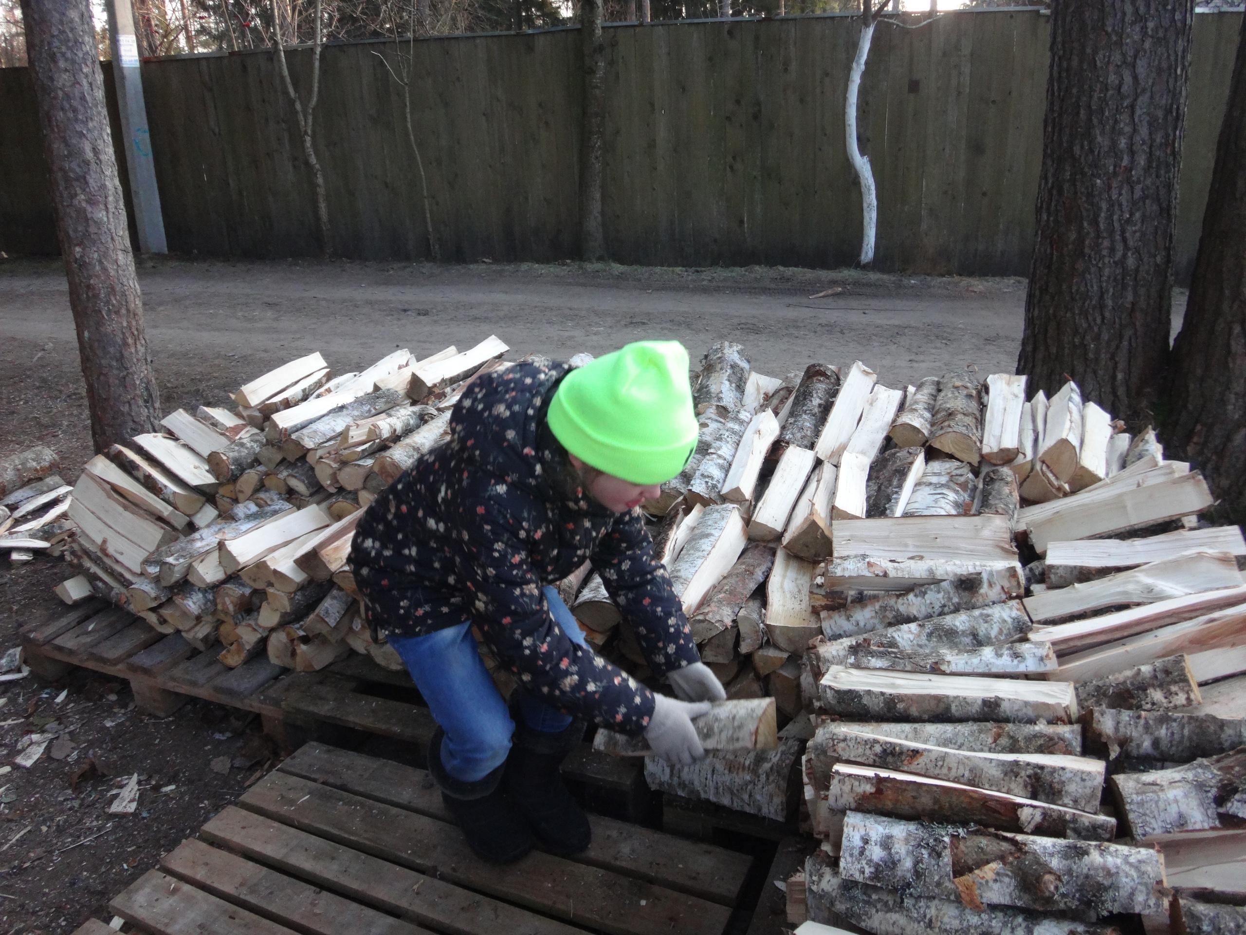 один мой ноябрьский день в Вырице, Ленинградская область, область, фото 37