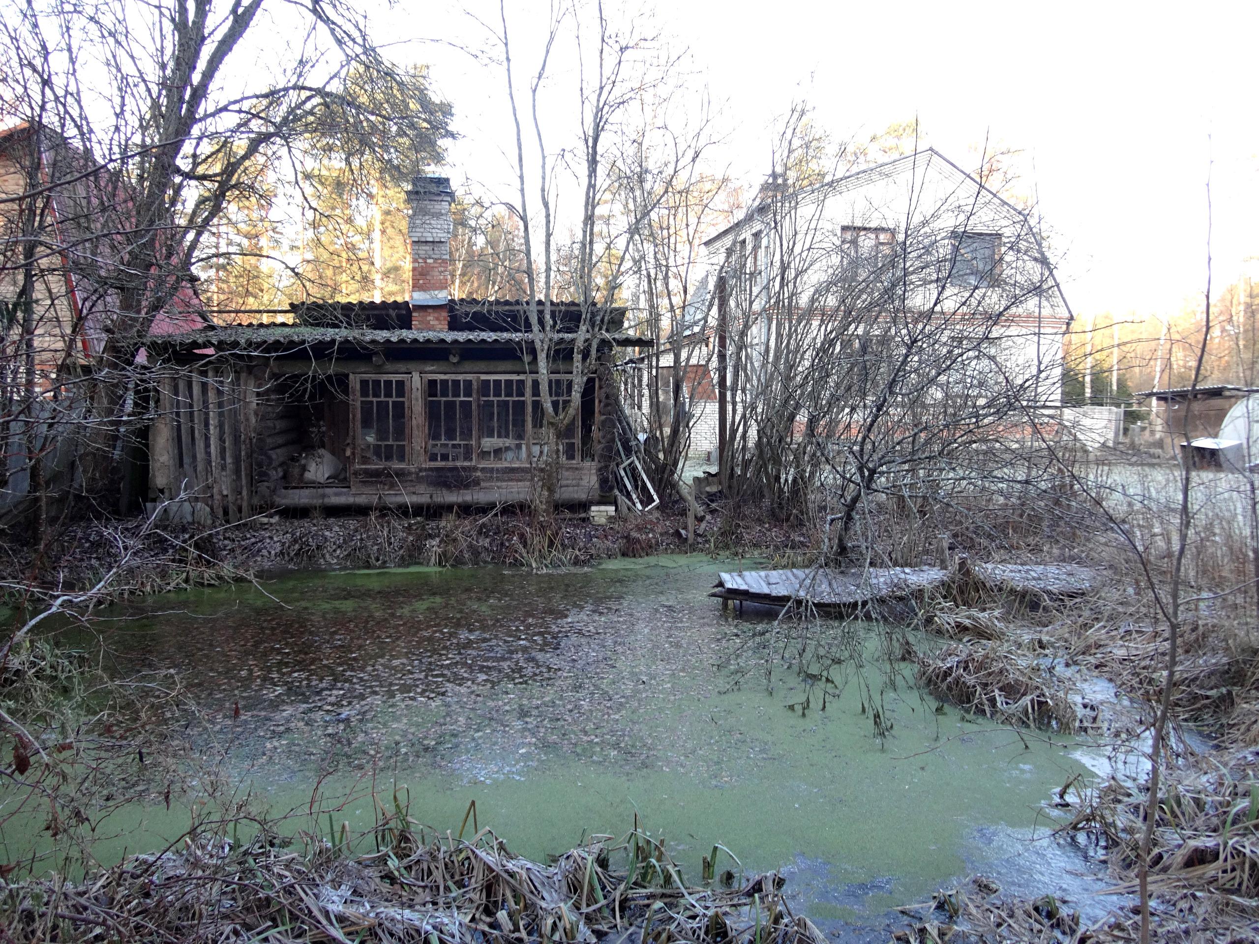 один мой ноябрьский день в Вырице, Ленинградская область, область, фото 38