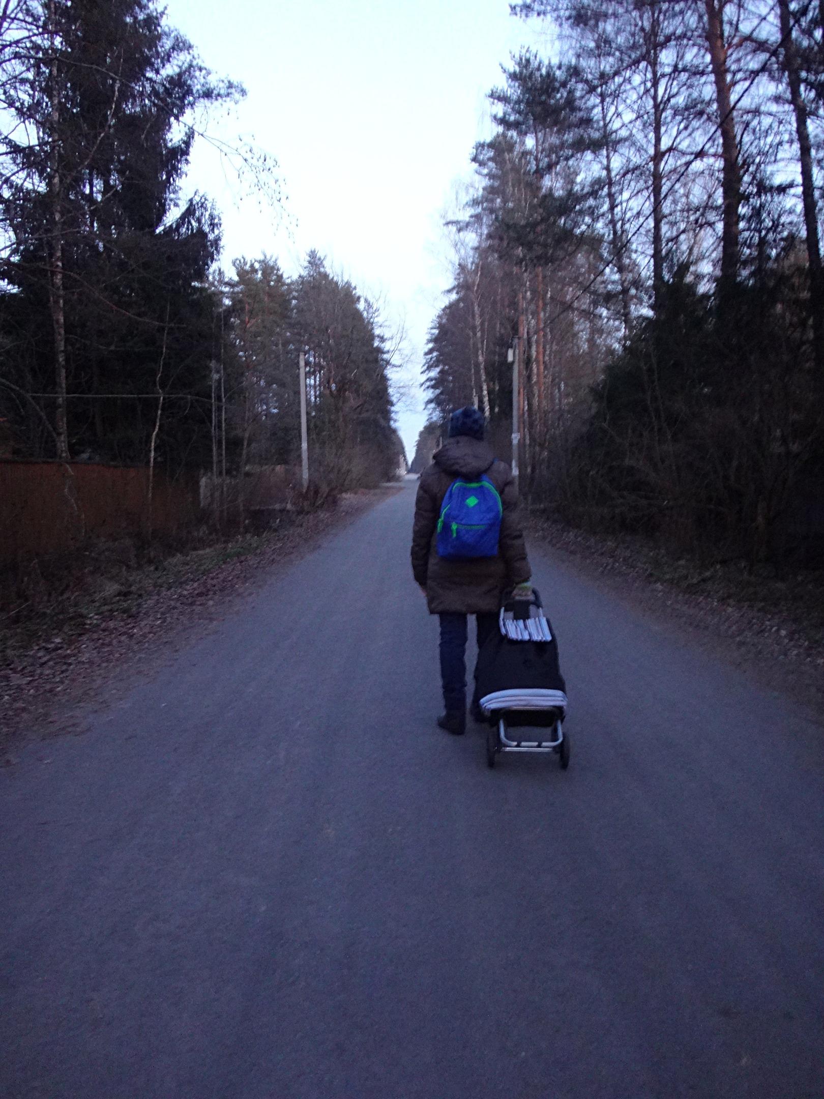 один мой ноябрьский день в Вырице, Ленинградская область, область, фото 41