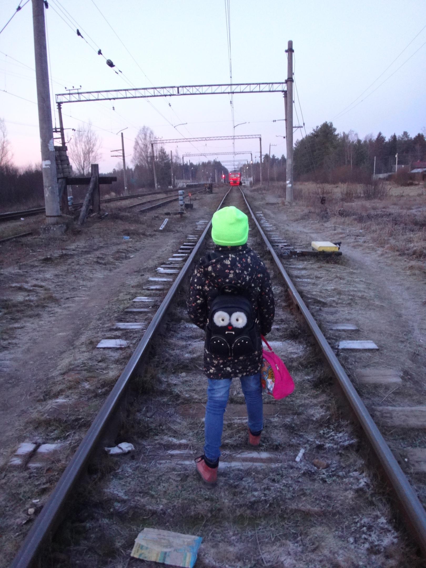 один мой ноябрьский день в Вырице, Ленинградская область, область, фото 42