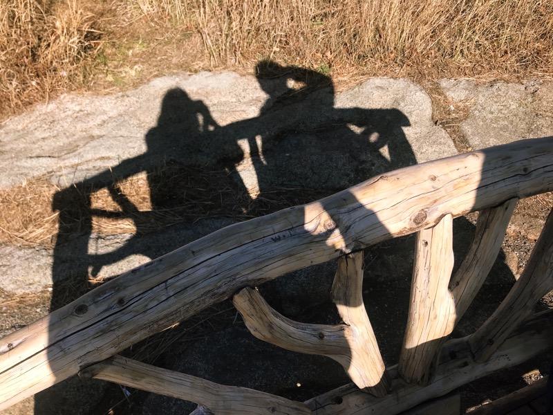 один мой день проведенный в походе на медвежью гору в Харрисоне, США, фото 32