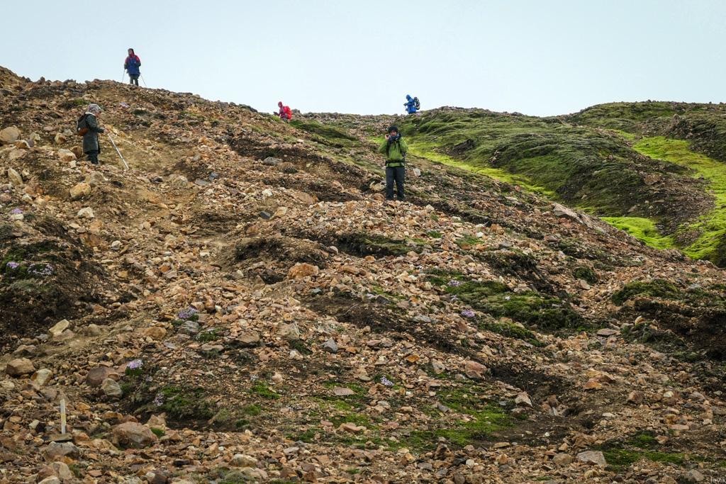 один день программиста из Гугла в походе по Исландии, фото 50