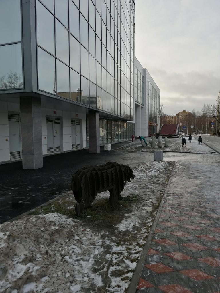 один день писательницы в Петрозаводске, Карелия, фото 15