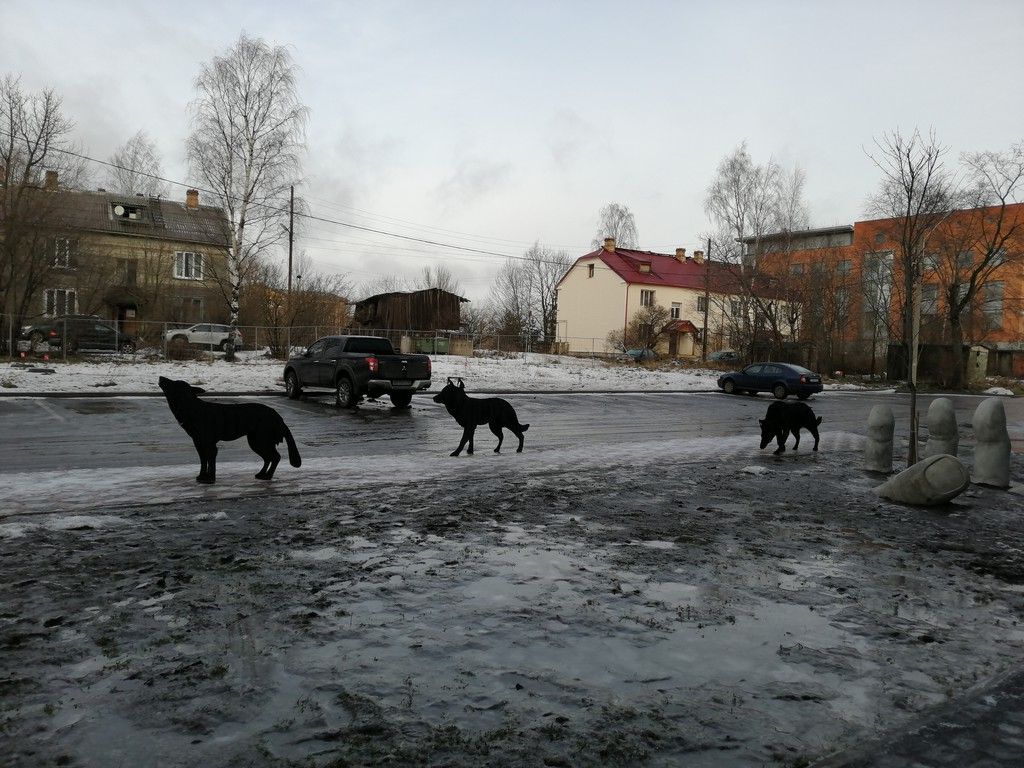 один день писательницы в Петрозаводске, Карелия, фото 16