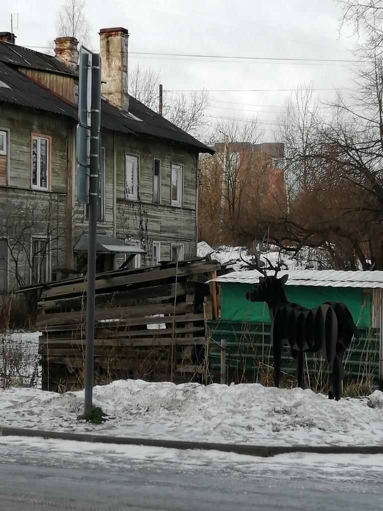 один день писательницы в Петрозаводске, Карелия, фото 17