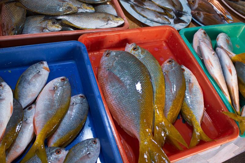 один день фрилансера в тайской глуши, стирка, готовка, бытовуха, фото 31