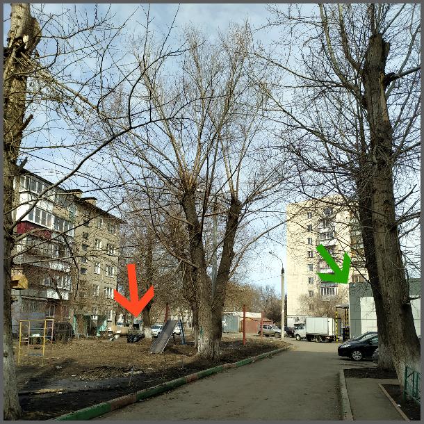один мой день на карантине проведенный дома, Челябинск, фото 15
