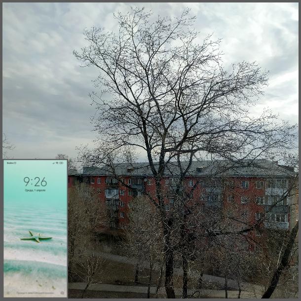 один мой день на карантине проведенный дома, Челябинск, фото 2