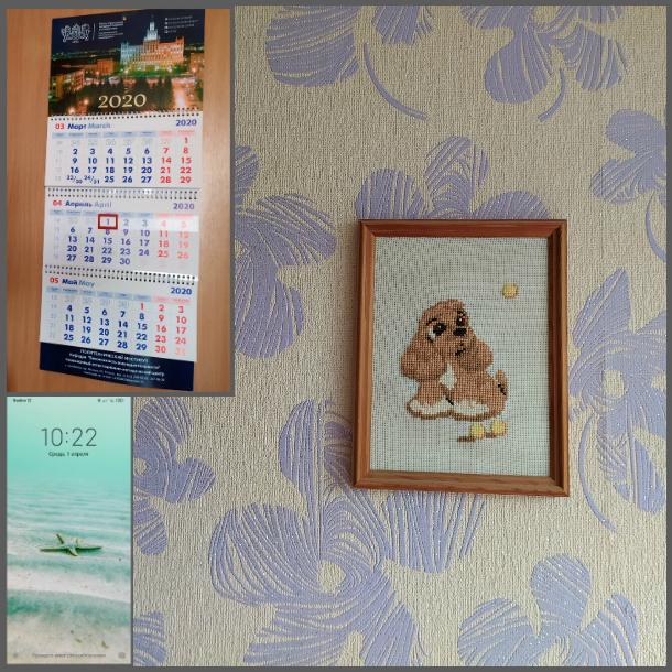 один мой день на карантине проведенный дома, Челябинск, фото 7