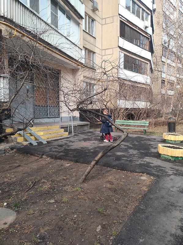 Один предпраздничный день редактора, март месяц, Долгопрудный, Московская область, фото 33