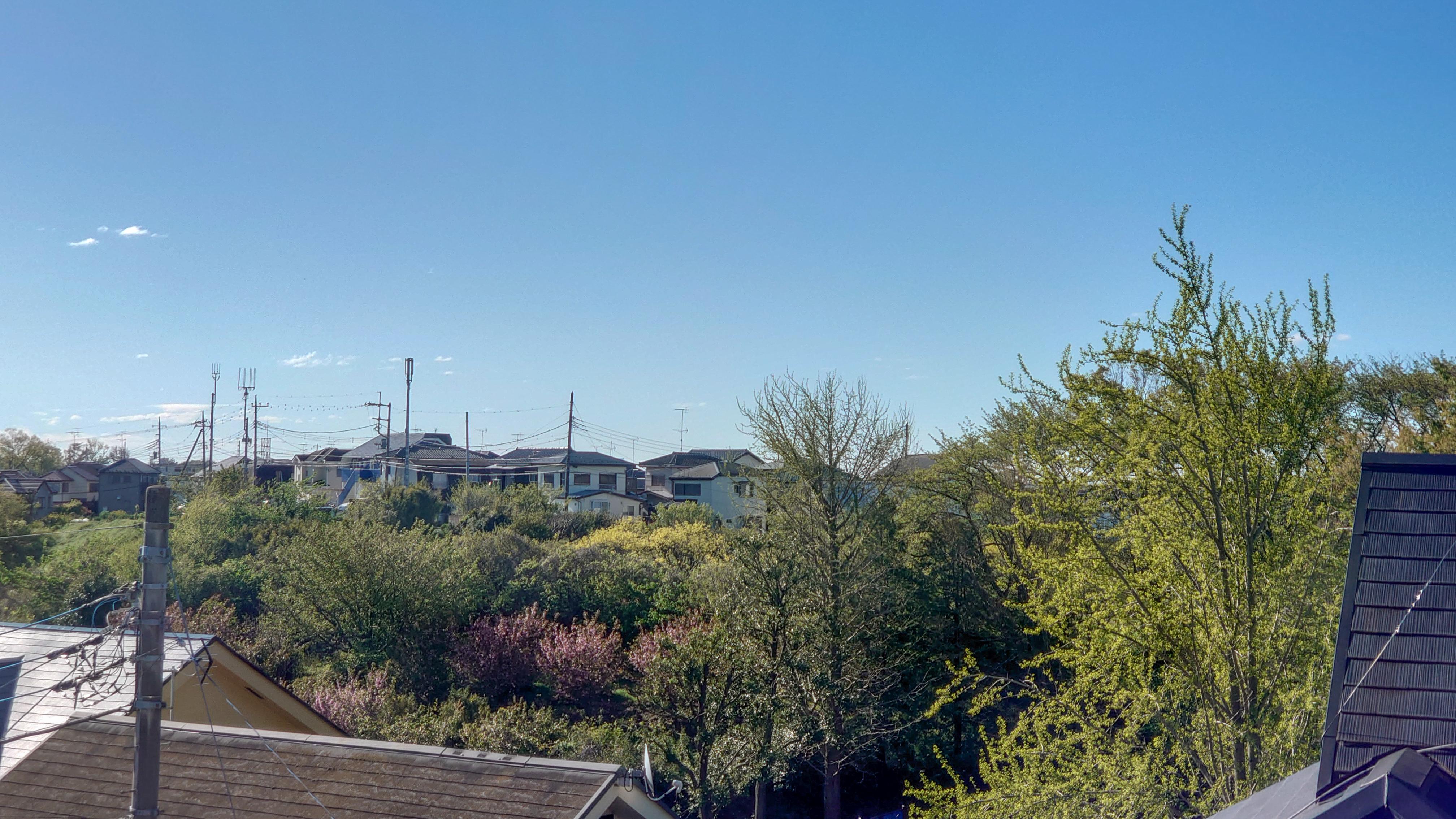 Один день домохозяйки в недоизоляции, Япония, фото 3