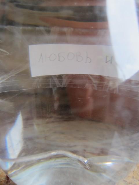 один будний день бывшей москвички переехавшей на пмж во Францию, фото 12