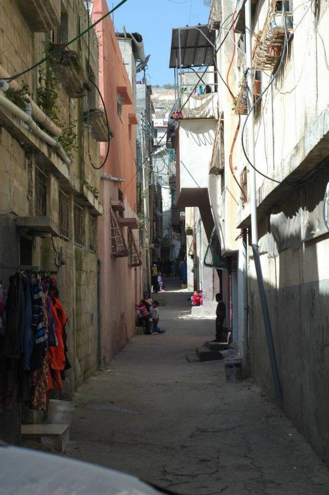 Один мой выходной день проведенный в пути, из Самарии в Палестину и назад, фото 29