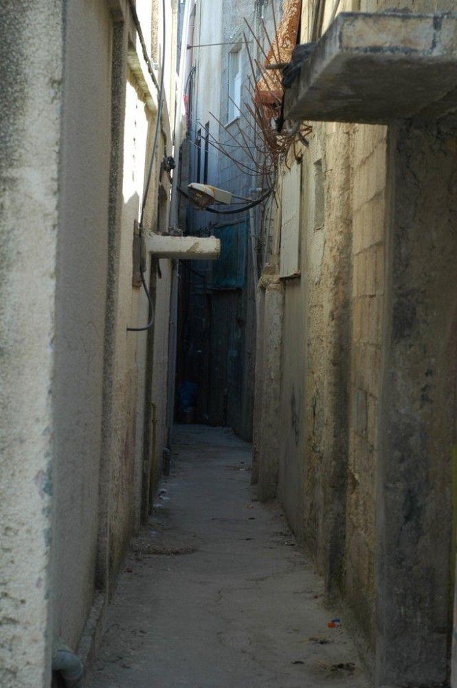 Один мой выходной день проведенный в пути, из Самарии в Палестину и назад, фото 30