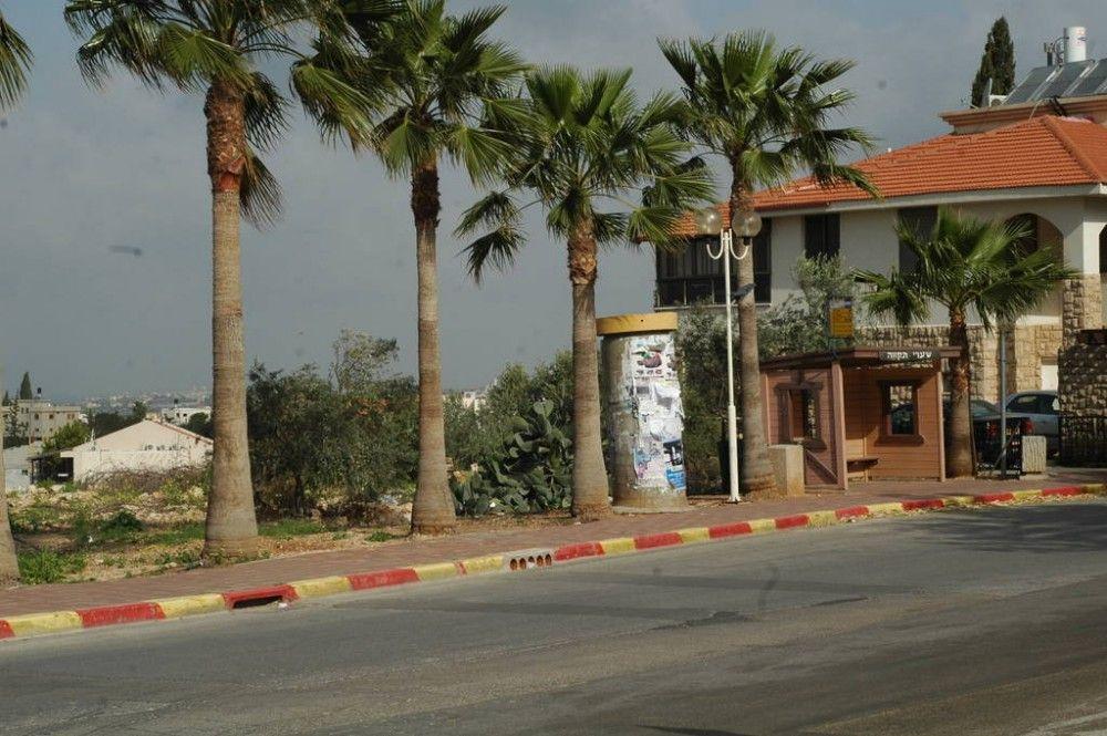Один мой выходной день проведенный в пути, из Самарии в Палестину и назад, фото 5
