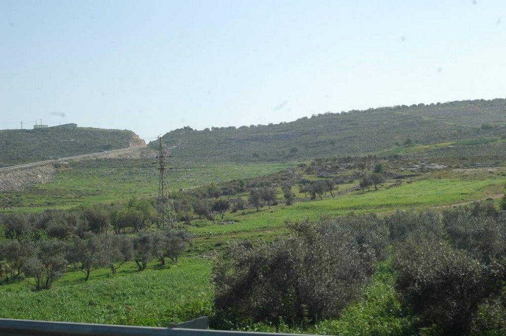 Один мой выходной день проведенный в пути, из Самарии в Палестину и назад, фото 58