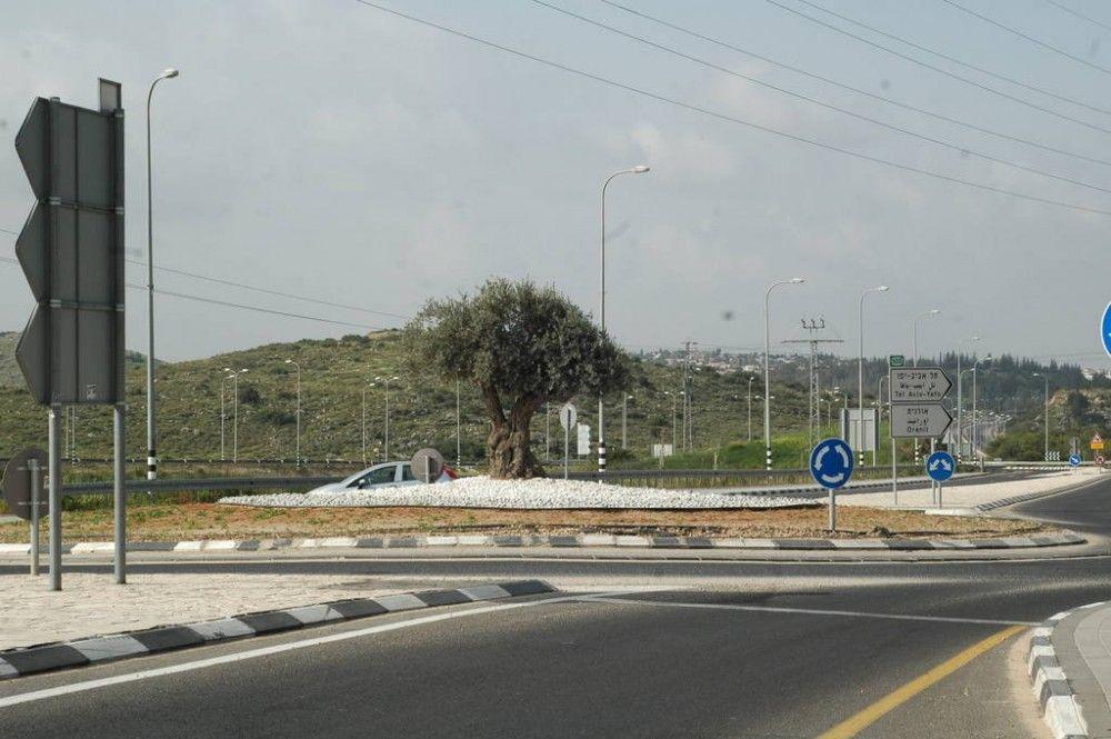 Один мой выходной день проведенный в пути, из Самарии в Палестину и назад, фото 8