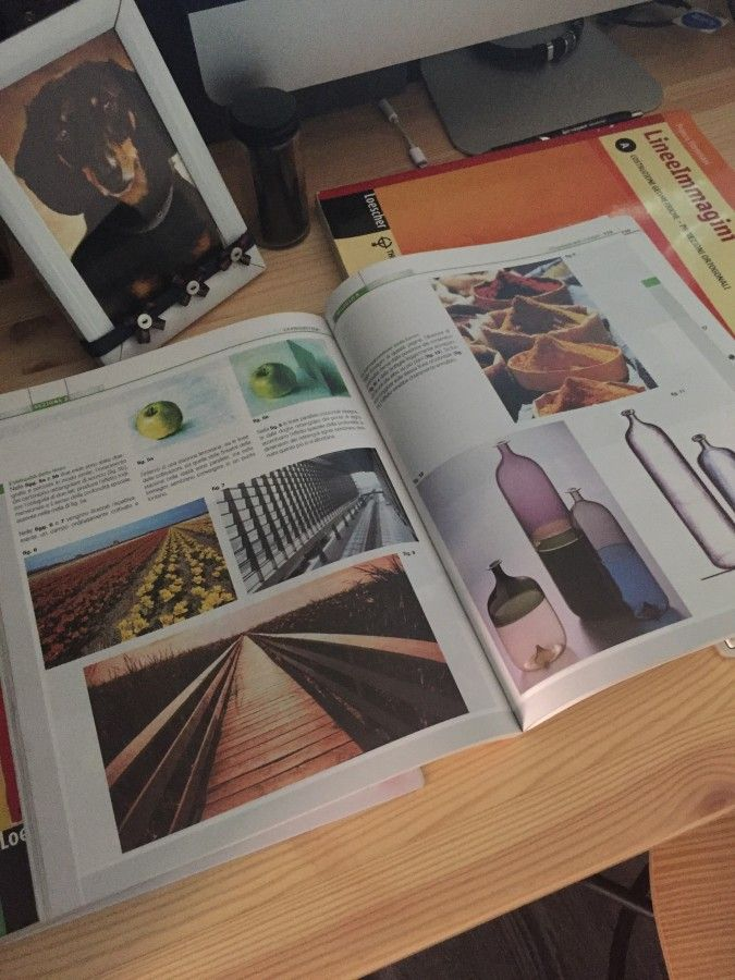 Один день дизайнера на карантине, Италия, фото 12