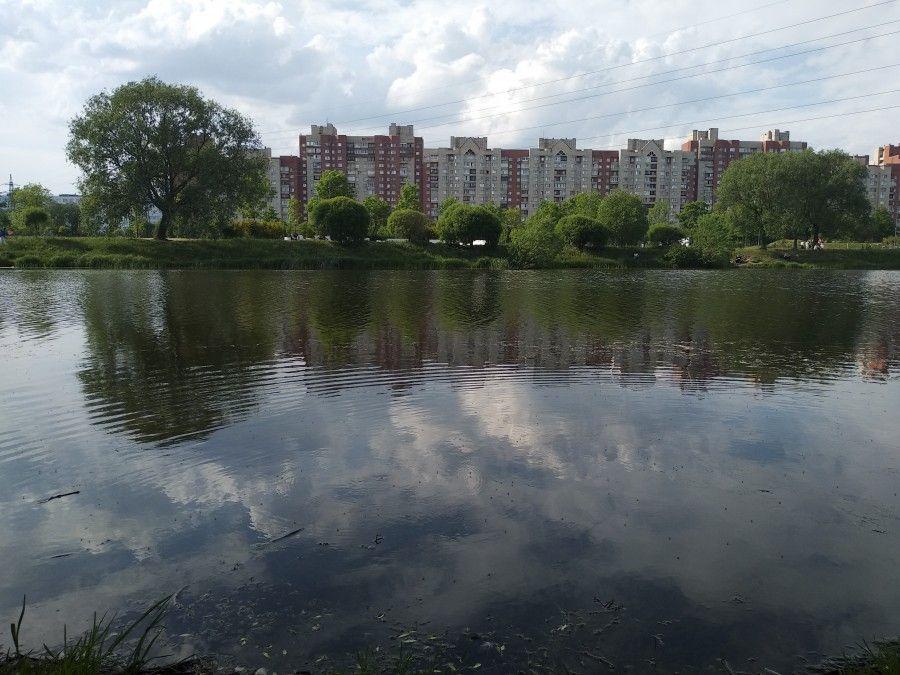 Один летний день учителя, Санкт-Петербург, фото 18